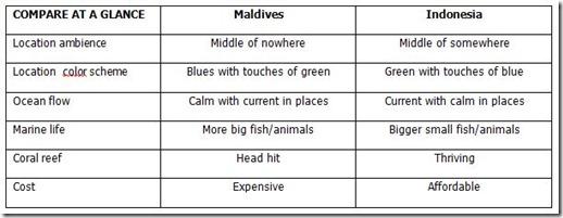 Maldives v Indonesia