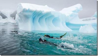 Snorkeling - polar