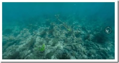 Havent Seen - panoramic reef video