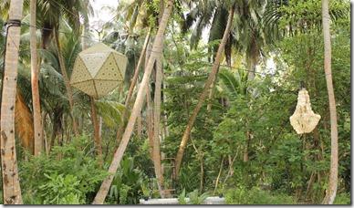 Amilla Fushi - garden 1