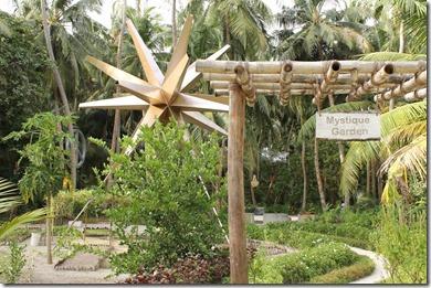 Amilla Fushi - garden 2