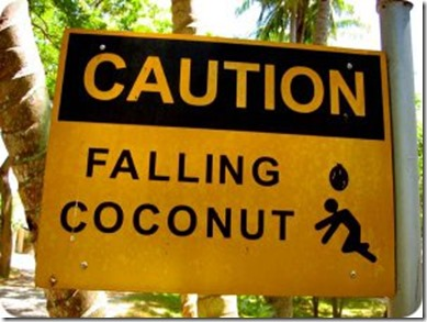 Falling coconut warning