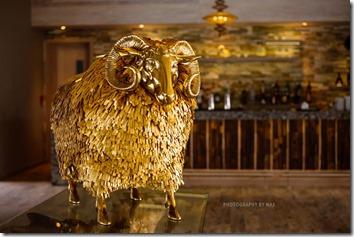 Finolhu - golden sheep