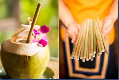 Anantara - eco straws