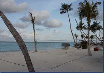 LUX North Male Atoll - palm tree vollyball