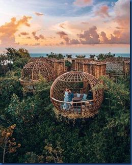 Waldorf Ithaafushi - bird nest 2