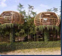 Waldorf Ithaafushi - birds nests 1