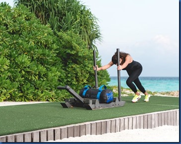 One & Only Reethi Rah - push sled