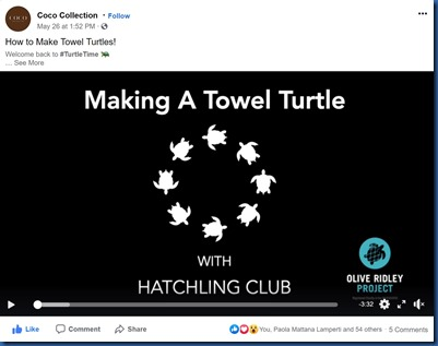 Coco Collection - turtle making video