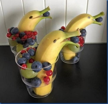 Havent Seen Yet - dolphine fruit cup