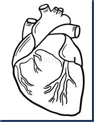 Maldives heart sketch