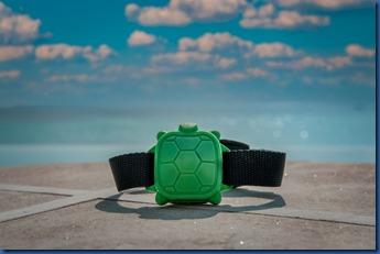 Amilla - safety turtle