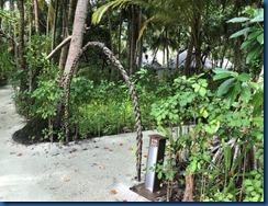 KIHAA - palm arbor entrance