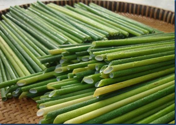 Havent Seen - grass straws
