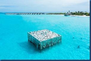 Sirru Fen Fushi - coral frame