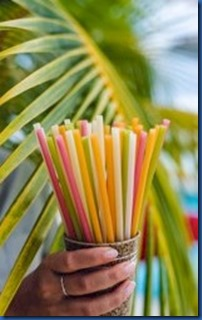 LUX South Ari Atoll - edible straws