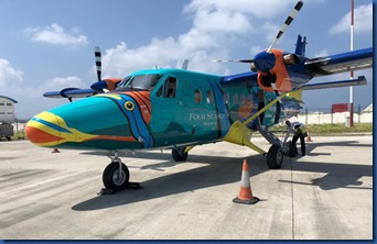 Four Seasons Landaa Giraavaru - parrot fish plane