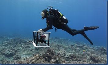 Carpe Diem - underwater VR