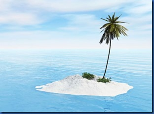 Havent Seen - palm tree island