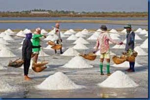 Havent Seen - sea salt harvesting